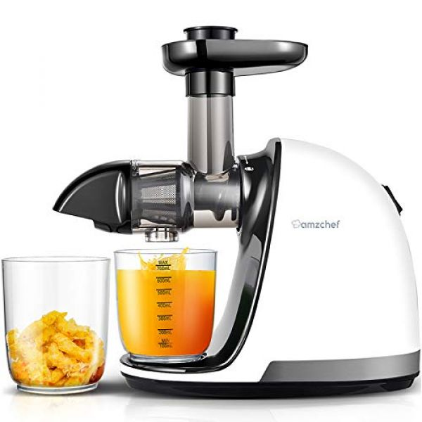 Amzchef Slow Juicer